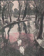 full colour wood-engraving original print: Swans